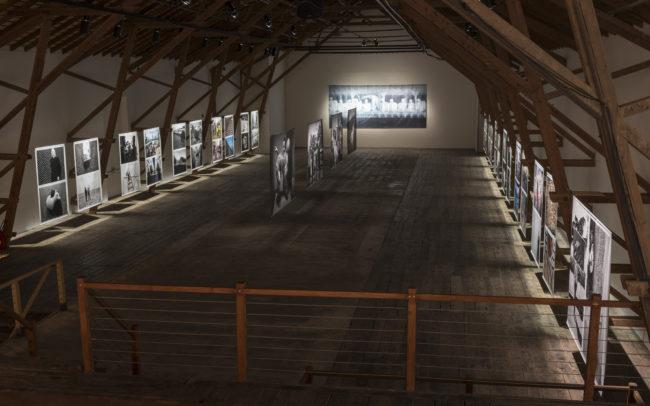 Expositions - Ferme Asile 2017 - Hofer Crispini 01