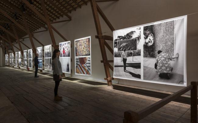 Expositions - Ferme Asile 2017 - Hofer Crispini 02